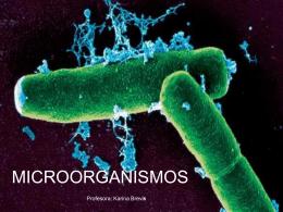 Diapositiva 1 - BIOLOGIA Y CIENCIAS | Blog creado para la