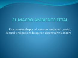 EL MACRO AMBIENTE FETAL