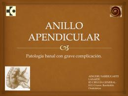 ANILLO APENDICULAR