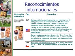 Reconocimientos internacionales