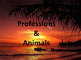 Professions & Animals
