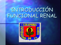 INTRODUCCION FUNCIONAL RENAL
