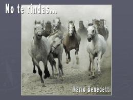 CABALLOS y Benedetti