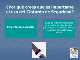 SINDIACATO NACIONAL DE TRABAJADORES DEL SEGURO …