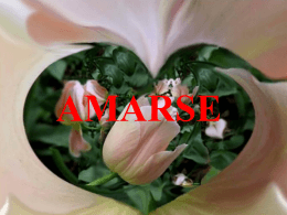 Amense