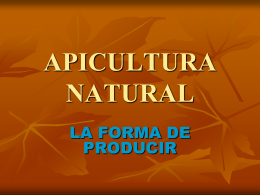 APICULTURA NATURAL