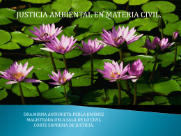 JUSTICIA AMBIENTAL EN MATERIA CIVIL
