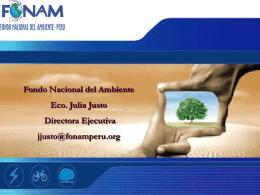 CDM in Peru