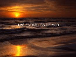 LAS ESTRELLAS DEL MAR