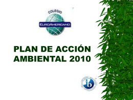 PLAN DE ACCION AMBIENTAL 2007