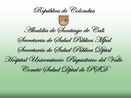 PLAN DE SALUD MENTAL CALI 2004 -2007