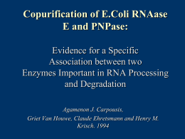 Copurification of E.Coli RNAase E and PNPase: Evidence for