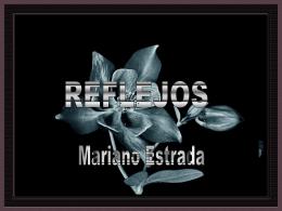 Mar_reflejos