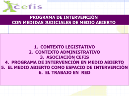 PROGRAMA DE INTERVENCION EN MEDIO ABIERTO