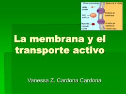 La membrana y el transporte activo