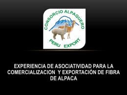 CONSORCIO ALPAQUERO PERU EXPORT