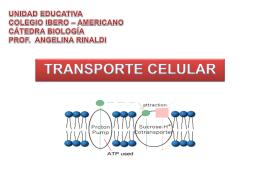 UNIDAD EDUCATIVA COLEGIO IBERO – AMERICANO …