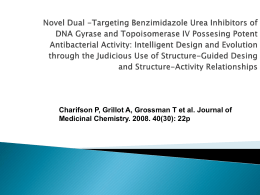 Novel Dual -Targeting Benzimidazole Urea Inhibitors of …