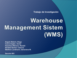 Warehouse Management Sistem (WMS)