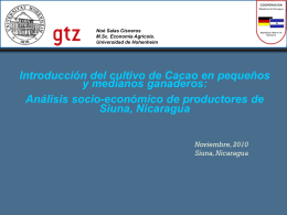 Introducing cacao to cattle producers: A socio