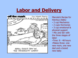 Labor and Delivery - Viscodes and sks99