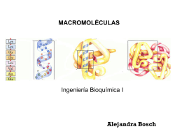 ION STUDY - Educacion Cs Biologicas y Quimicas