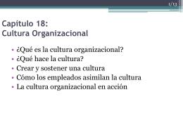 18 Cultura Organizacional