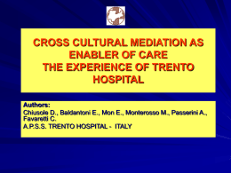 CROSS CULTURAL MEDIATION AS ENABLER OF CARE THE …