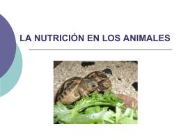 LA NUTRICION EN ANIMALES. EL APARATO DIGESTIVO.
