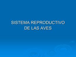 REPUBLICA BOLIVARIANA DE VENEZUELA MINISTERIO …