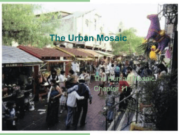 The Urban Mosaic - Home | The University of Texas at Austin