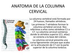 ANATOMIA DE LA COLUMNA CERVICAL
