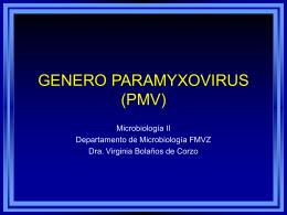GENERO PARAMYXOVIRUS (PMV)