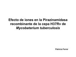 Efecto de metales en la enzima recombinante H37Rv de