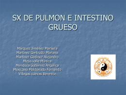 SX DE PULMON E INTESTINO GRUESO