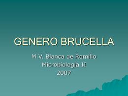 GENERO BRUCELLA - Avindustrias Guatemala