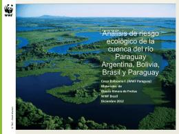 Analysis riesgo ecologico Cuenca Paraguay