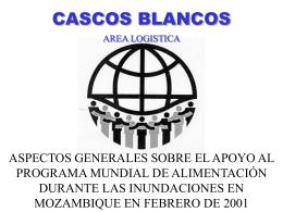CASCOS BLANCOS - DISASTER info DESASTRES