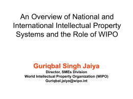 An Overview of National and International Intellectual