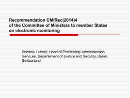 European Rules on Electronic Monitoring