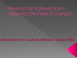 TRABAJO DE FORMACION Y ORENTACION PARA EL …