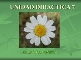 UNIDAD DIDACTICA 7 - Conodequinto's Blog | Just …