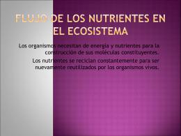 FLUJO DE LOS NUTRIENTES EN EL ECOSISTEMA