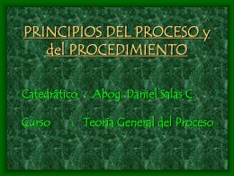 PRINCIPIOS PROCESALES EN LA CONSTITUCION