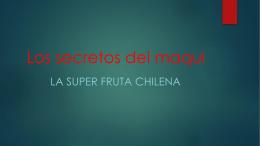 El maqui, la super fruta chilena