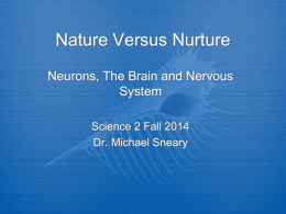 Nature Versus Nurture - SJSU - Science in the 21st Century
