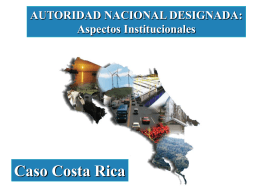 Aspectos institutionales, Autoridad Nacional Designada