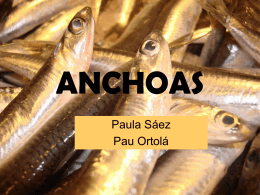 ANCHOAS - Home - Ana Albors Sorolla