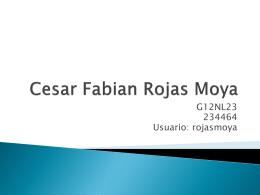 Cesar Fabian Rojas Moya