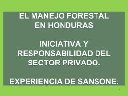 EL MANEJO FORESTAL COMO INICIATIVA Y …